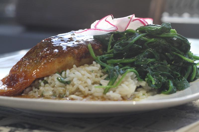Salmon Chef Hardy